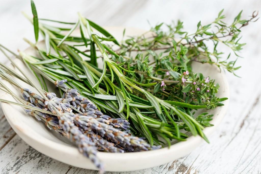 herbs-dish